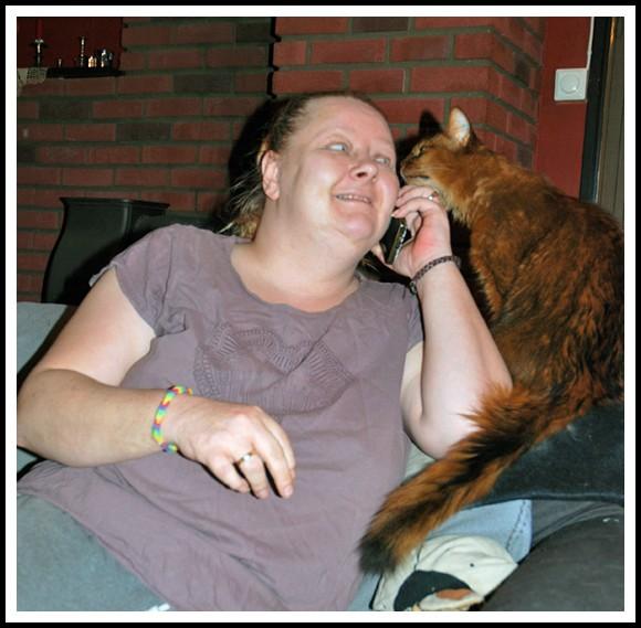 Min telefonvenn har også katt, og vi ler gjerne sammen av pusene våre.